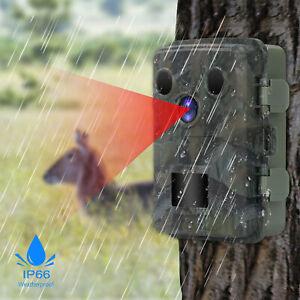 Moniteur infrarouge de caméra de surveillance des animaux de faune avec 48 LED