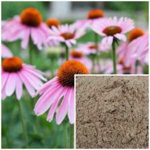 Echinacea-powder-organic-soap-making-supplies-herbal-extracts