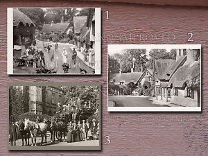 Shanklin-Village-Isle-of-Wight-UK-England-1890s-1930s-photos-lot-CHOICES-5x7s-or