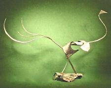 BIRD Metal Sculpture by Rod Rogers