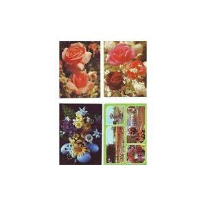 Lot-4-Cartes-Postales-Theme-Fleurs-Horticulture-Non-Ecrites