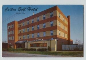 Image Is Loading Vintage Kennett Mo Missouri Cotton Boll Hotel Postcard