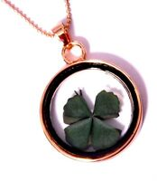 4 Leaf Clover Four-leaved Plant Goldtone Glass Locket Pendant Necklace Lucky E4