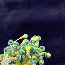 40 Yellow and Green Frosted Tipped Double Ended Flower Stamen 4mm (3/16 in) Wide