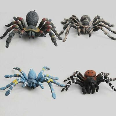 3Pcs Simulation Wildlife Animals Spider Model Figures Kids Toys Collectibles