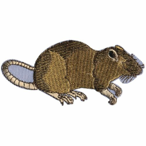 Aufnaeher Applikation 8,5 x 4 cm Ratte Maus Nagetier 00375