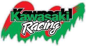 Kawasaki-Racing-Nascar-Car-Bumper-Window-Notebook-Sticker-Decal-6-034-X3-034