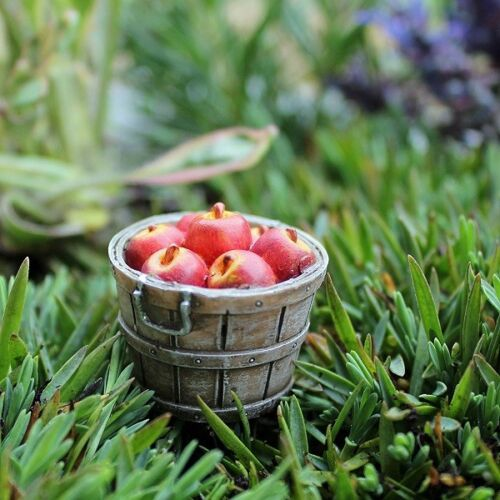 "* Apple Basket 1/"" Tall Miniature Fairy Garden Dollhouse Bushel"