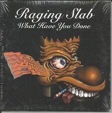 RAGING SLAB What Have w/ UNRELEASED w/ PEARL JAM drum JACK IRONS PROMO CD single