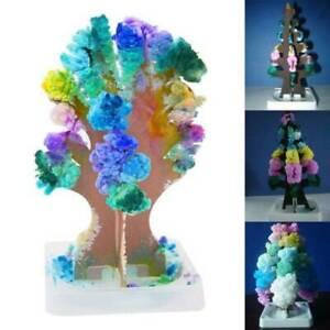 Christmas-Magic-Growing-Tree-Toy-Boys-Girls-Novelty-Xmas-Stocking-Filler-Gift-AK