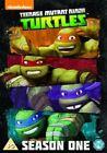 Teenage Mutant Ninja Turtles The Complete Season One DVD 4 Disc Set Series 1