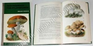 POCKET-BOOK-FOR-FRIEND-OF-MUSHROOMS-Germany-1975