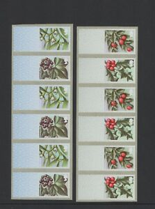 WINTER-GREENERY-R18YAL-CL18S-2018-TWO-BLANK-STRIPS-Post-and-GO