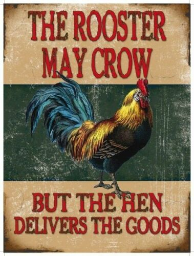Rooster May Crow House Small Metal Tin Sign Picture Pub Funny Comedy Chicken