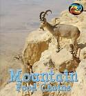 Mountain Food Chains by Angela Royston (Paperback / softback, 2014)
