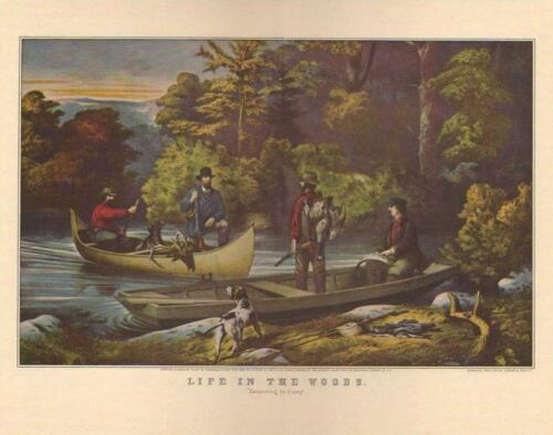 Vintage Art Original Color Print LIFE IN THE WOODS