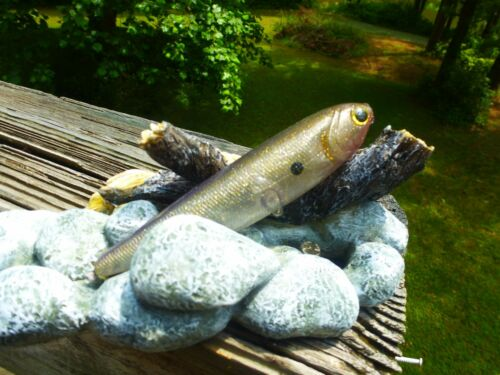 swim bait pure shad CUSTOMPAINTED GOLD SHINER LUCKYCRAFT SAMMY STYLE TOPWATER