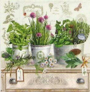 4x-Paper-Napkins-Vintage-Herbarium-for-Party-Decoupage