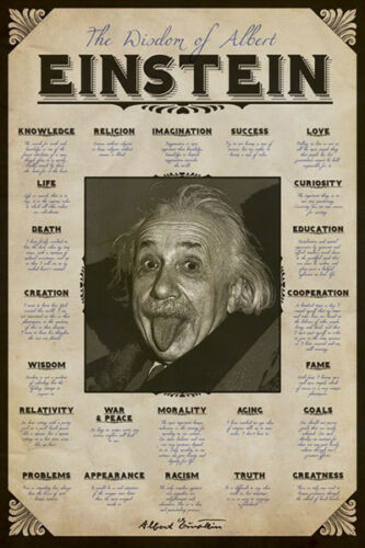 Albert Einstein 2 Individual Posters Quote Bike Black and White New Never Hung