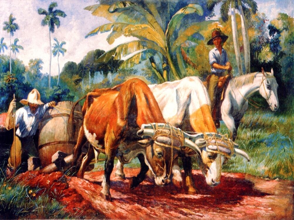 5803.Oxen pulling load.man on horse.men farming.POSTER.Home Office art
