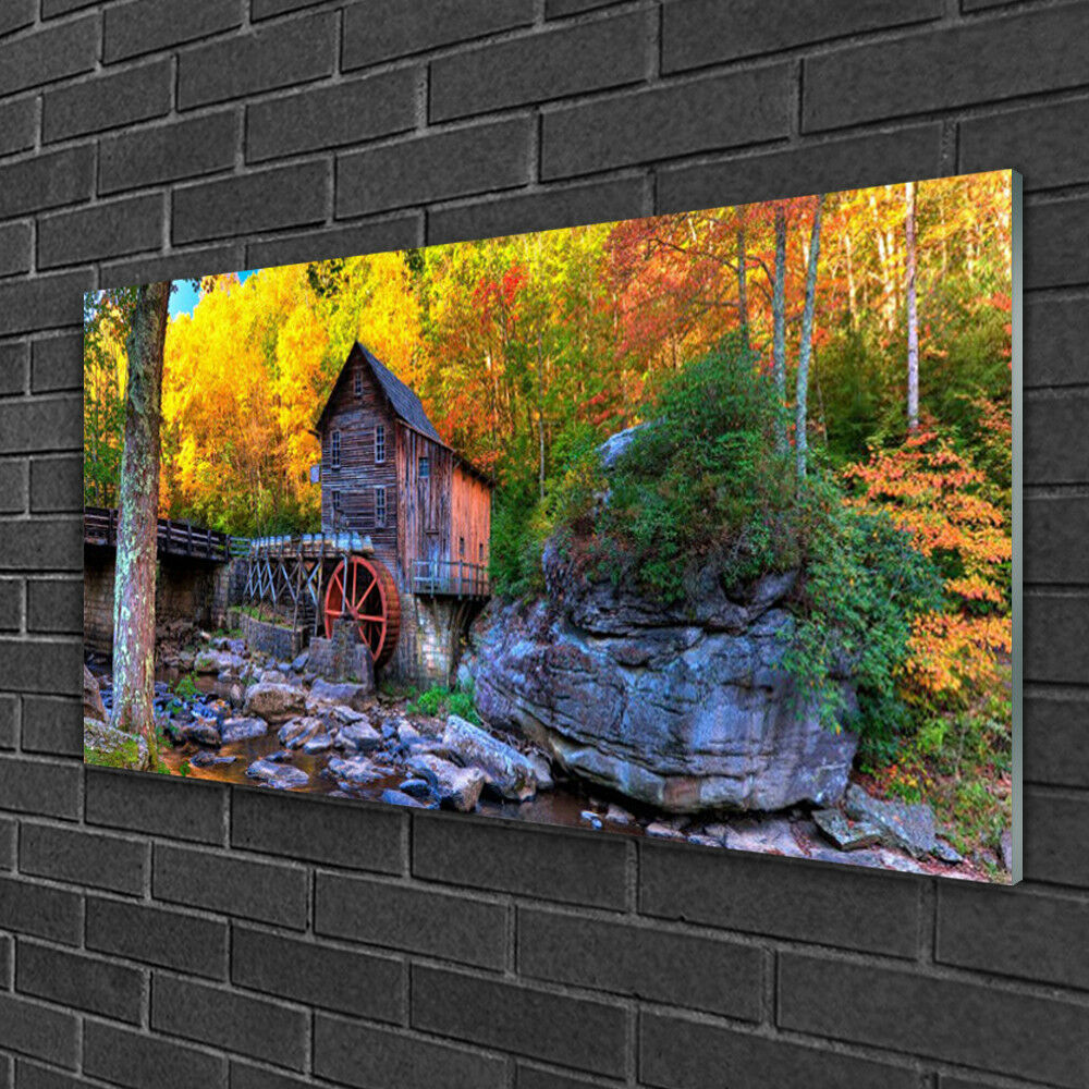Glass print Wall art 100x50 Image Picture Forest Stones Nature