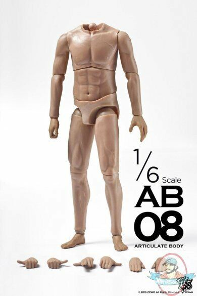 1 6 Scale Figure Muscular Articulate Body AB08 ZC-187 Zc World