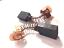 Carbone brosseurs Paire pour BALDOR DC Motor 15.8 mm x 7.88 mm 21 longueur de l/'