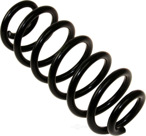 Coil Spring Rear WD Express 380 33084 316