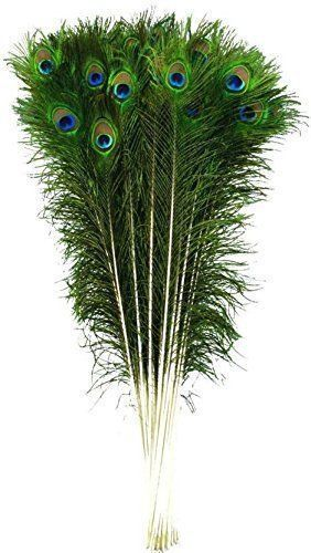 Mor Pankh 12 Pcs Natural Peacock Feathers Beautiful Peacock Eye Feathers Tails