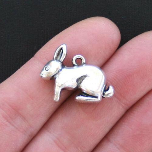 2 Rabbit Antique Silver Tone Charms 3D SC2858