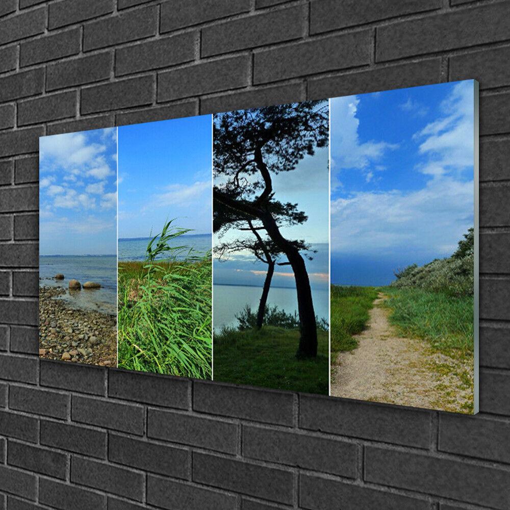 Image sur verre Tableau Impression 100x50 Paysage Plage Arbre Sentier