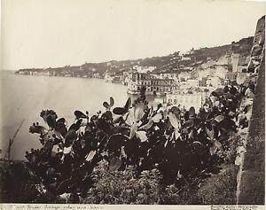 Italia Napoli Foto Amodio Vintage Albumina Ca 1875