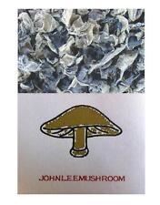 Black fungus the woodear top grade 300 grams