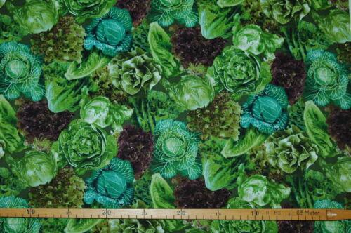 0,3m campo frutos china kohl las ensalada 1,1m de ancho Patchwork de tela € 20//m²