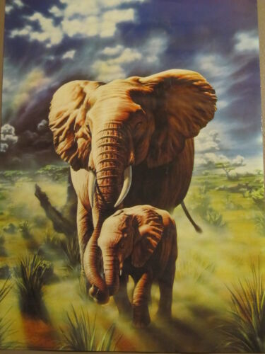 AFRICAN ELEPHANT AND CALF POSTER PRINT ADRIAN CHESTERMAN 1992 39