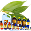 3ml-Essential-Oils-Many-Different-Oils-To-Choose-From-Buy-3-Get-1-Free thumbnail 26