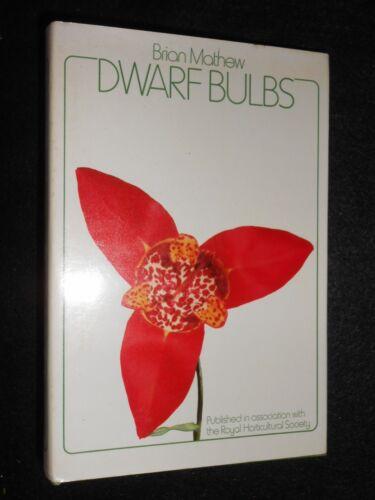 1 of 1 - Dwarf Bulbs by Brian Matthew (Hardback, 1973-1st) 700 Species, Flora, Gardening
