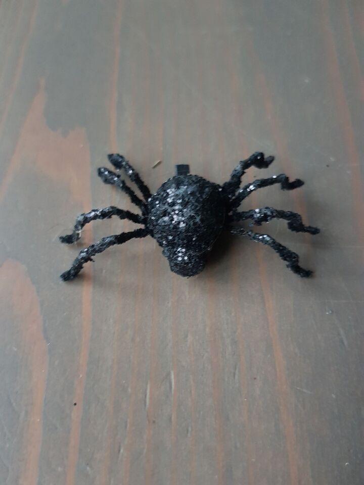 Dyr, edderkop, halloween