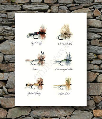"Fly Fishing /""TROUT FLIES/"" Watercolor 8 x 10 Art Print by Artist DJ Rogers"