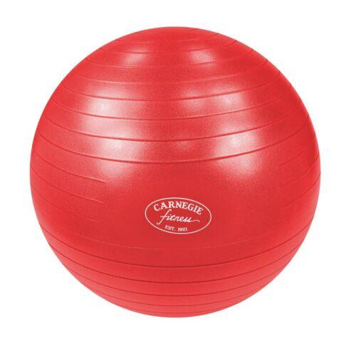 Gymnastikball Ø 75 cm Massageball Fitnessball Sitzball 300 kg + Pumpe