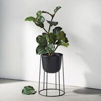 Menu Wire Flower Plant Pot Black