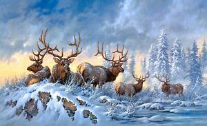 PLAQUE MÉTAL troupeau de rennes 30 X 20 CM