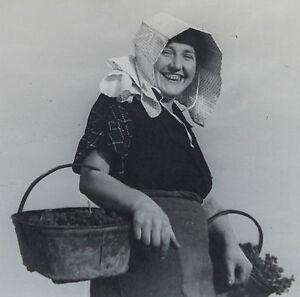 Photographie-Henri-Gros-Dijon-Bourgogne-Vin-Vigne-Vendanges-annees-1930-40-n-31