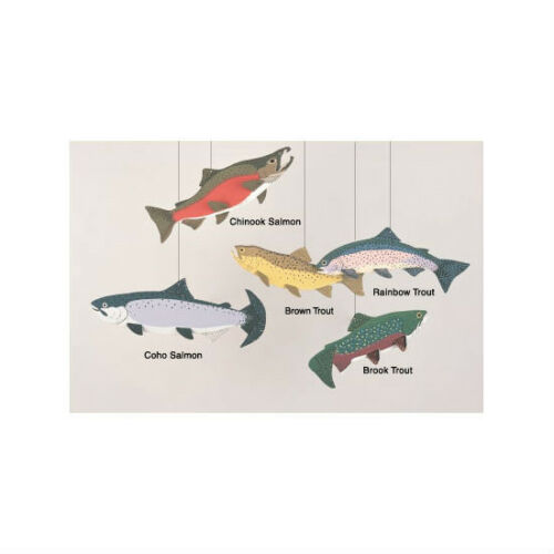 Skyflight Trout Fish Hanging Baby Classroom Mobile Kinetic Art Educational