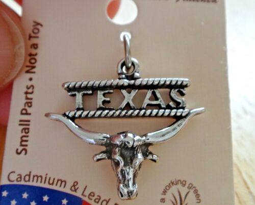 Sterling Silver 21x18mm Austin Says Texas with Longhorn Charm