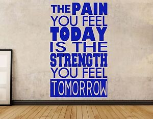 Gym Inspirational Wall art vinyl decal sticker The Pain You Feel Today