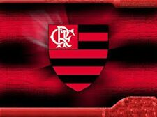 FLAMENGO FC ACADEMY SESSIONS COACHING DVD - FOOTBALL TRAINING soccer COERVER