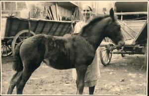 Ansichtskarte-Pferd-auf-Bauernhof-Privatfotokarte-1930