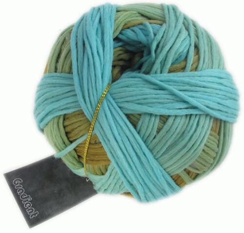 Gradient 100g von Schoppel Farbe 2202 Pustekuchen  100/% Schurwolle