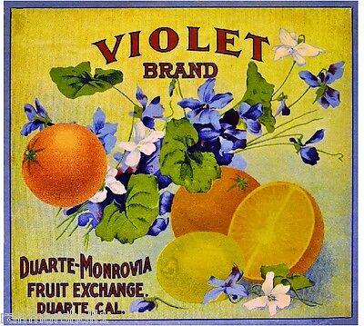 Monrovia Duarte Los Angeles Native Love Orange Citrus Fruit Crate Label Print